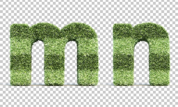 3d rendering of grass playing field alphabet m and alphabet n Premium Psd
