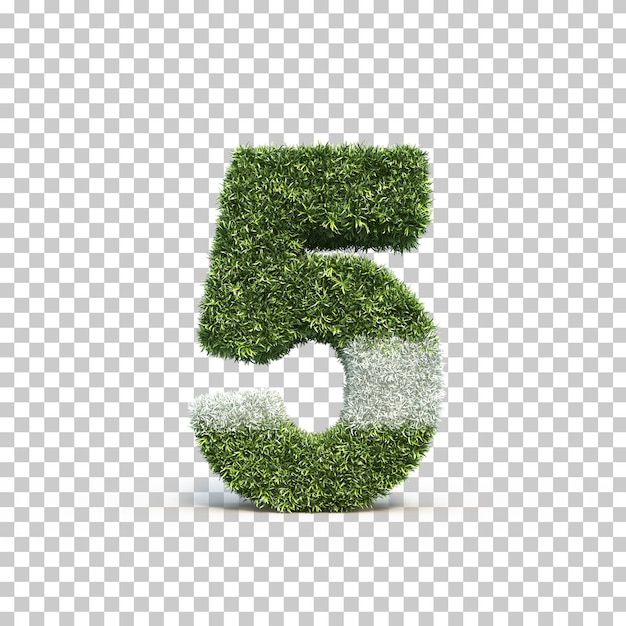 3d rendering of grass playing field number 5 Premium Psd