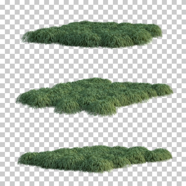 3d rendering of japanese forest grass Premium Psd