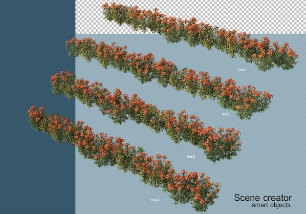 分離されたさまざまな角度で美しい植物の3dレンダリング Premium Psd