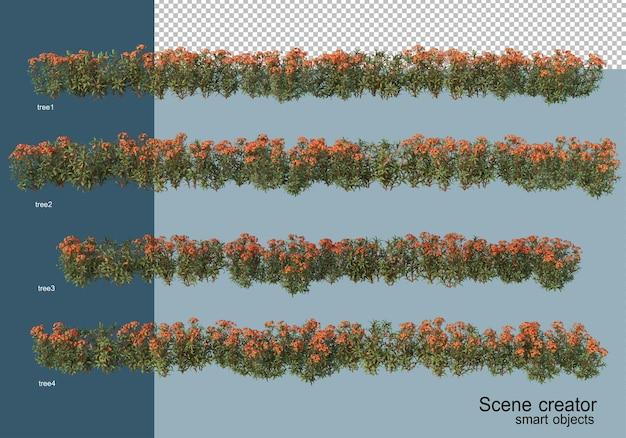 分離されたさまざまな角度で美しい低木の3dレンダリング Premium Psd