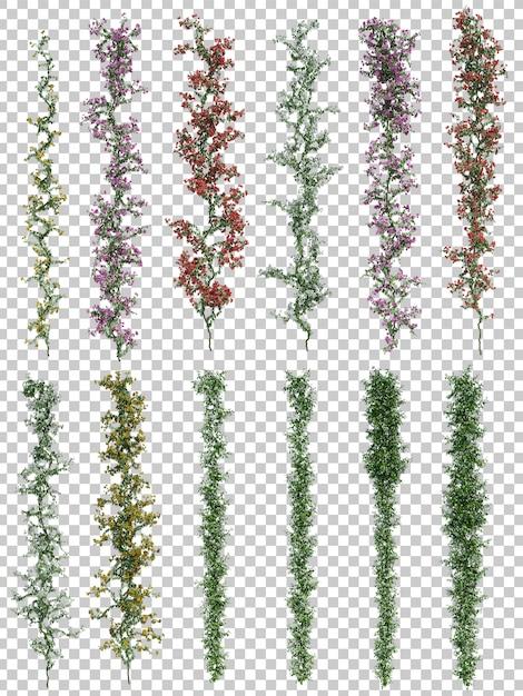 垂直植物の3 dレンダリング Premium Psd