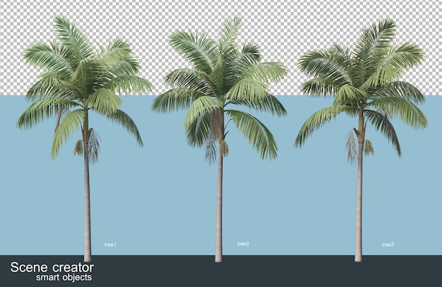 3d rendering of various species of trees Premium Psd