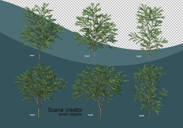 3d rendering of various tree design Premium Psd
