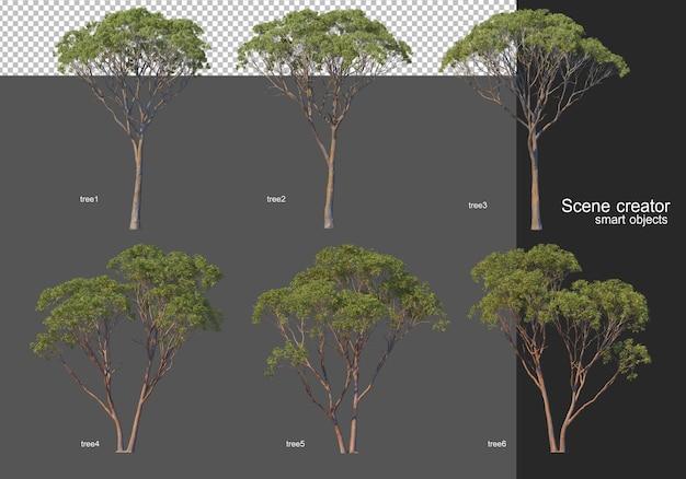 3d rendering, various tree layouts Premium Psd