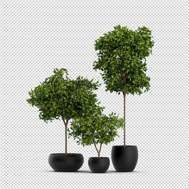Изометрические 3d-рендеринг растений Premium Psd