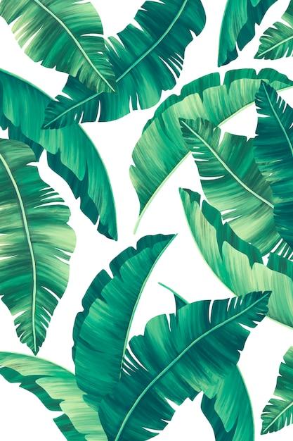 Элегантный тропический принт с красивыми листьями Бесплатные Psd