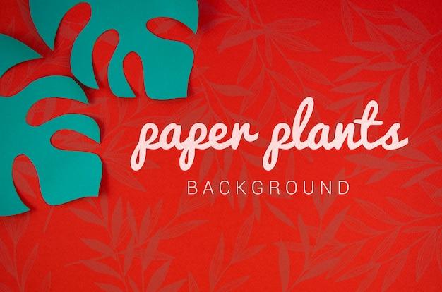 モンステラの青い葉と紙植物の背景 無料 Psd