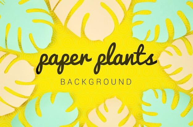 モンステラと紙植物の背景の葉フレーム 無料 Psd