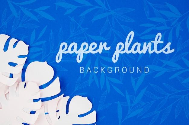 モンステラ紙植物の葉の背景に影 無料 Psd