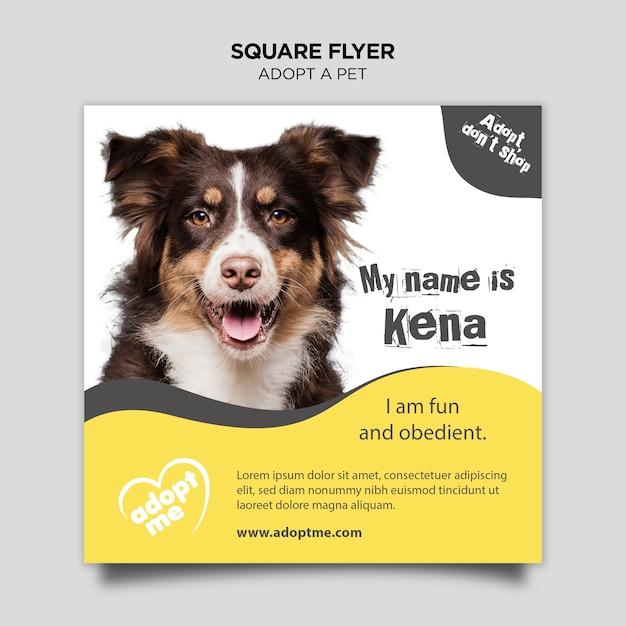 Принять животное квадратный флаер Бесплатные Psd