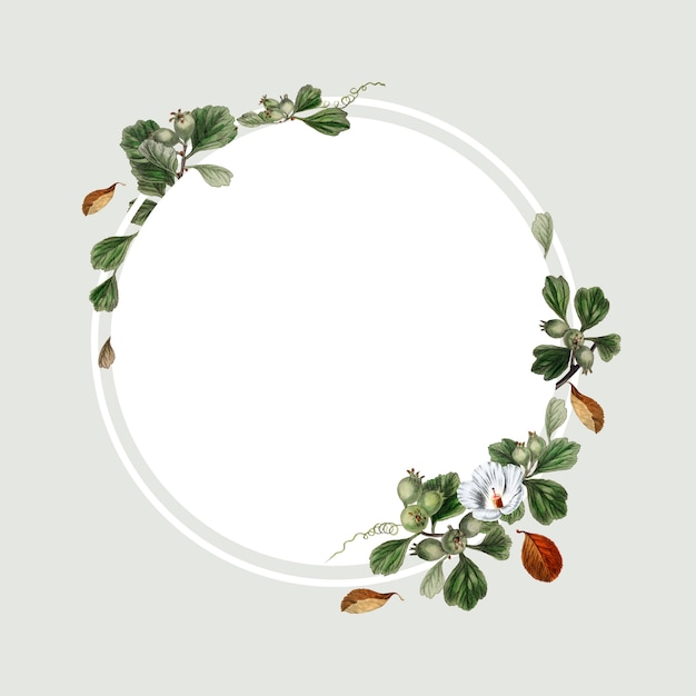 花のフレームデザイン 無料 Psd