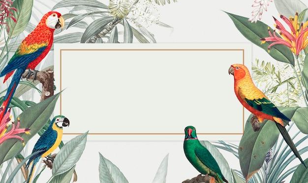 コンゴウインコ熱帯モックアップイラストレーション 無料 Psd