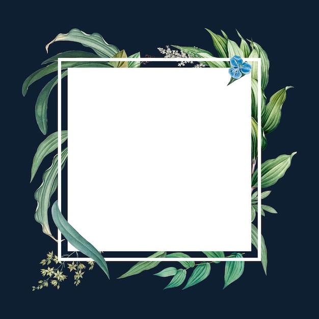 Пустая рамка с зелеными листьями Бесплатные Psd
