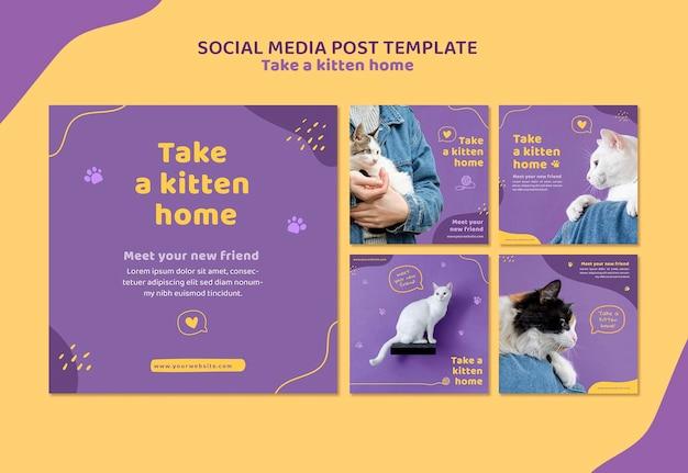새끼 고양이 소셜 미디어 게시물 템플릿 채택 무료 PSD 파일