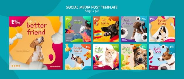 Принять шаблон поста в социальных сетях для домашних животных Бесплатные Psd