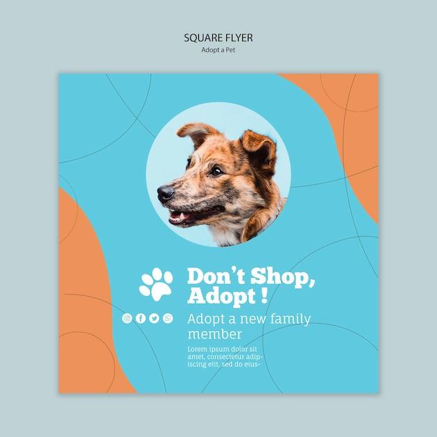 Принять шаблон квадратного флаера для животных Бесплатные Psd