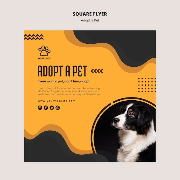 Adopt a petborder collie dog square flyer Free Psd
