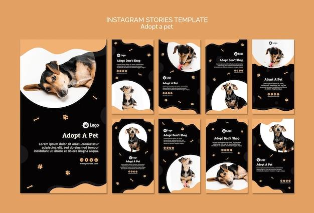 Adopt a pet concept instagram stories template Free Psd