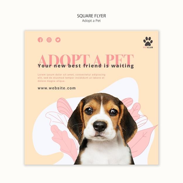 애완 동물 전단지 템플릿 테마를 채택 무료 PSD 파일