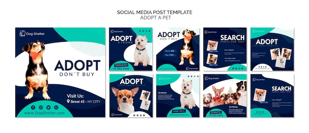 Adopt a pet instagram post collection Premium Psd
