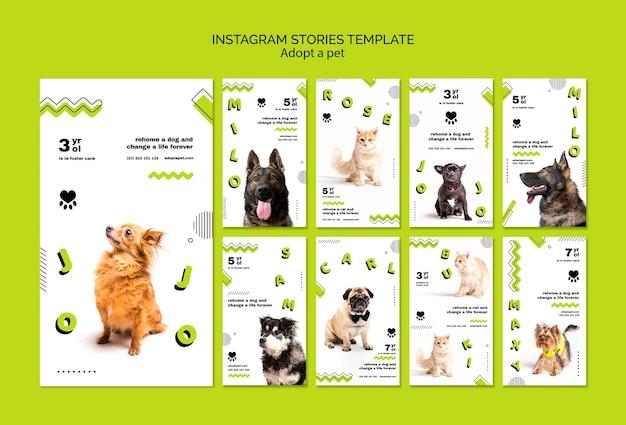 Adotta storie di instagram per animali domestici Psd Gratuite