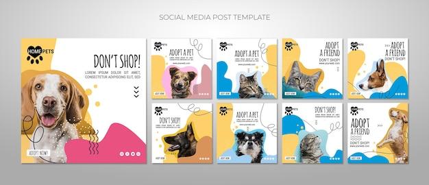 Adopt a pet social media posts template Free Psd