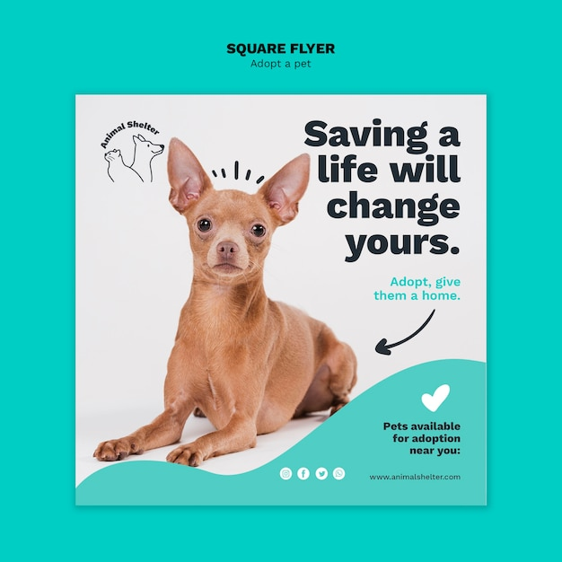 Adopt a pet square flyer style Free Psd