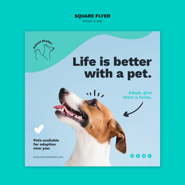 Adopt a pet square flyer template Free Psd