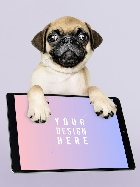 Adorable pug puppy with digital tablet mockup Free Psd