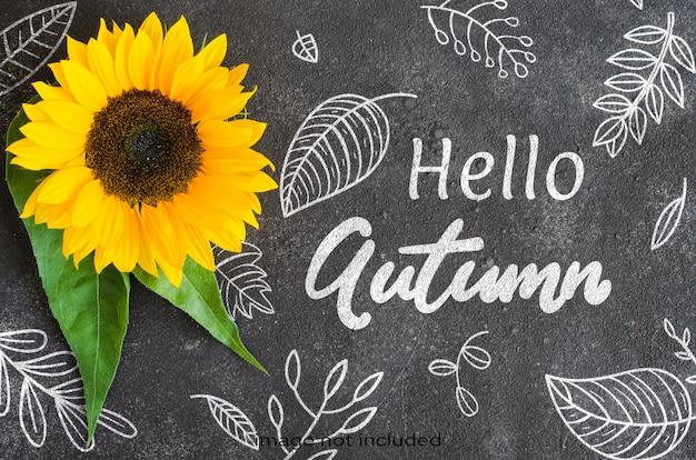 暗いコンクリートの黄色いヒマワリと秋の背景。テキストのためのスペース。 Premium Psd