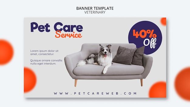 개가 소파에 앉아 애완 동물 관리를위한 배너 템플릿 무료 PSD 파일