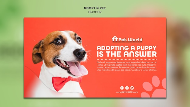 Banner template for pet adoption with dog Free Psd