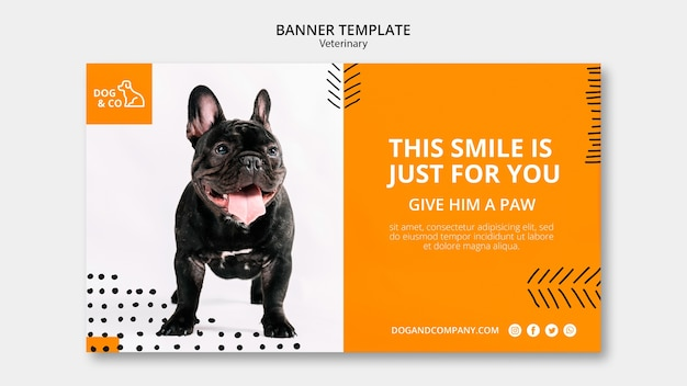 Banner template with veterinary design Free Psd