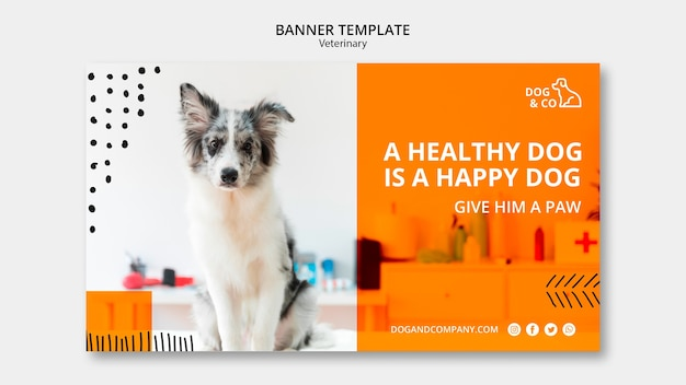 Banner template with veterinary Free Psd