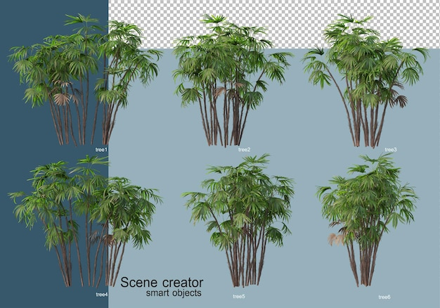 Beautiful 3d rendering of trees isolated Premium Psd
