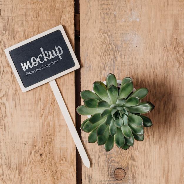 美しい植物と黒板のモックアップ 無料 Psd