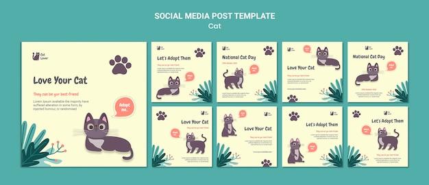 고양이 입양 소셜 미디어 게시물 템플릿 무료 PSD 파일