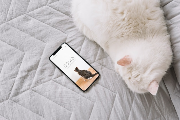 Cat and smartphone mockup on couch Free Psd
