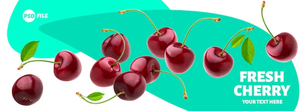 Cherries with stems and leaves isolated on white banner Premium Psd