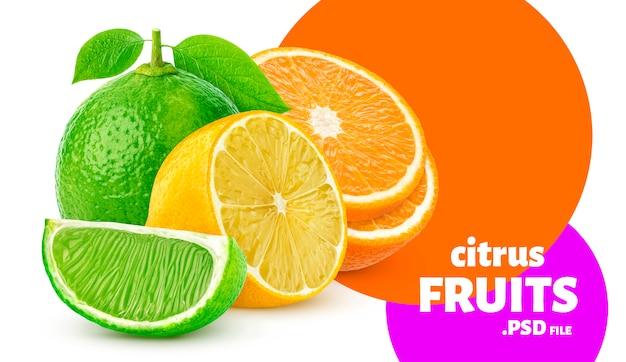 Citrus fruits isolated Premium Psd