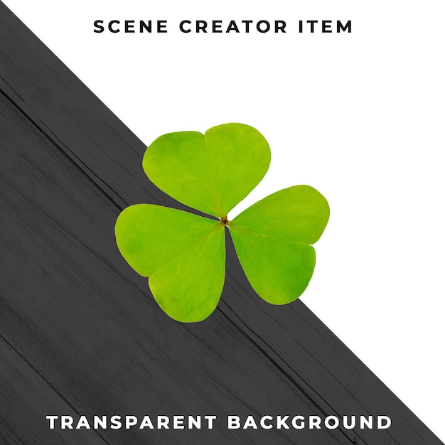 Clover isolated with clipping path. Premium Psd
