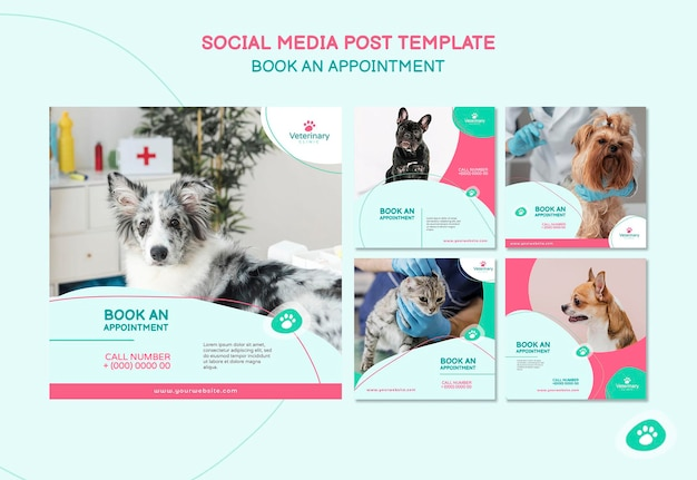 Collection of instagram posts for vet appointment Free Psd