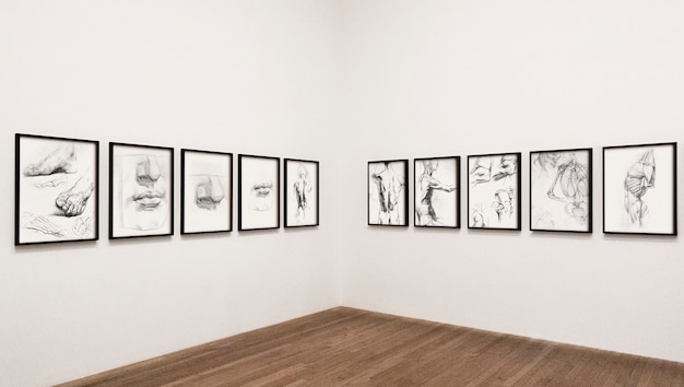 Collection of sketched human body parts framed on a wall Free Psd