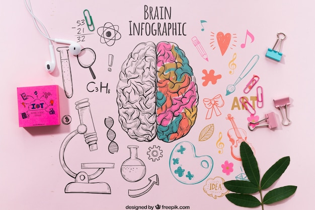 Colorful brain infographic on table template Free Psd