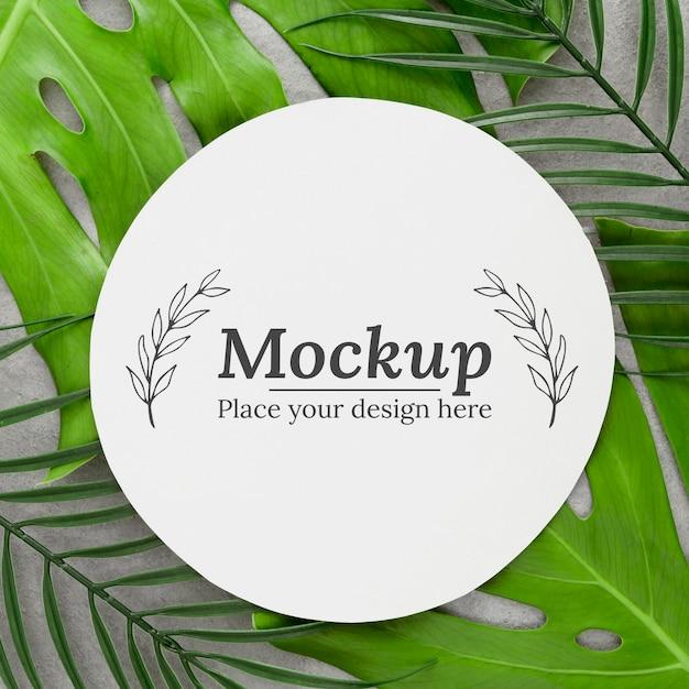 モックアップと緑の葉の構成 Premium Psd