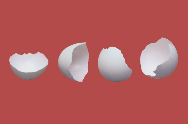 Cracked Egg Vectors, Photos and PSD files | Free Download