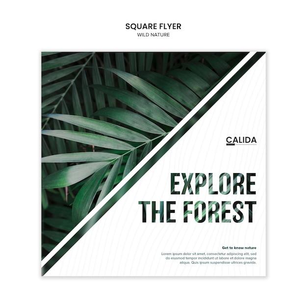 Творческий дикой природы квадратный флаер шаблон Бесплатные Psd