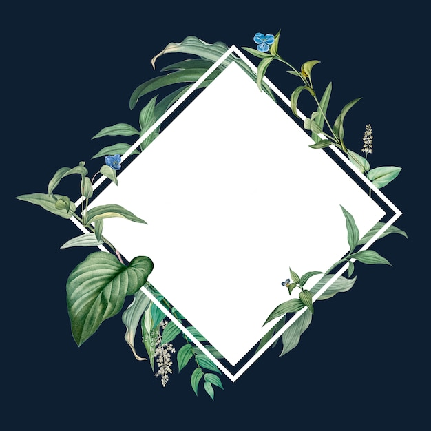 Empty frame with green leaves design Free Psd