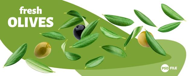 Falling olive leaves banner Premium Psd